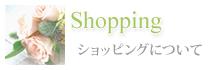 Shoping ショッピングについて